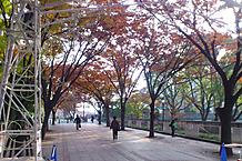 Nakanoshima_2